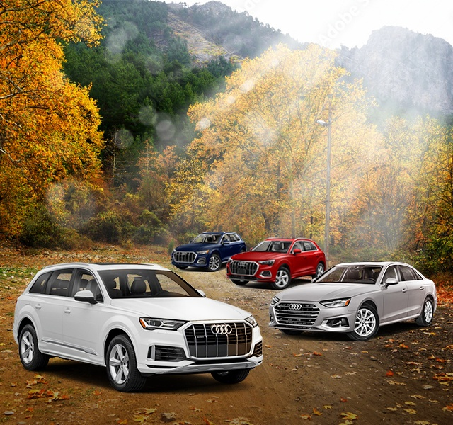 The Fall for Audi Event